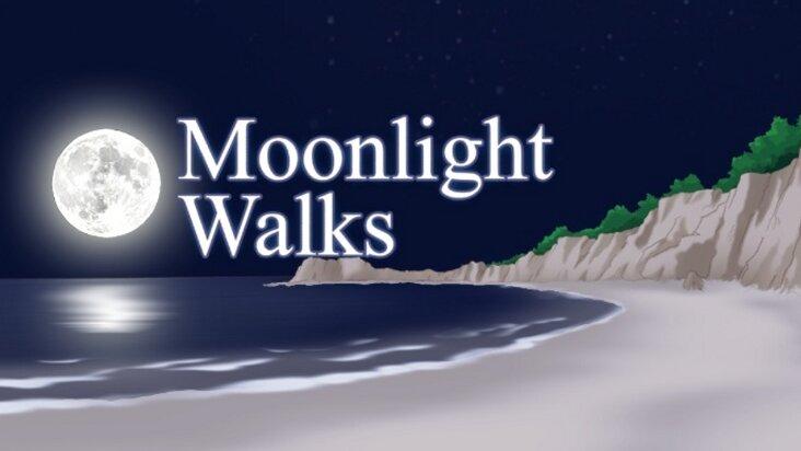 Screenshot of ../game/us.bishoujo.moonlight.htm